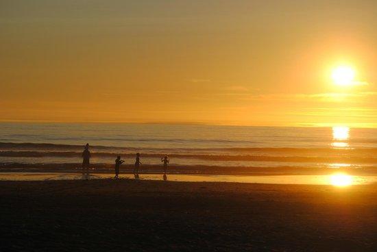 دريفتوود شورز ريزورت آند كونفرانس سنتر: Sunset