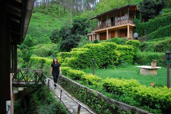 Woods Resort: Enjoyable stay