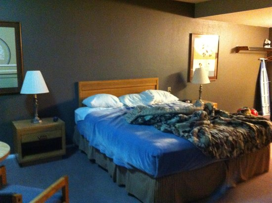 Cozy Inn : Good sized bed