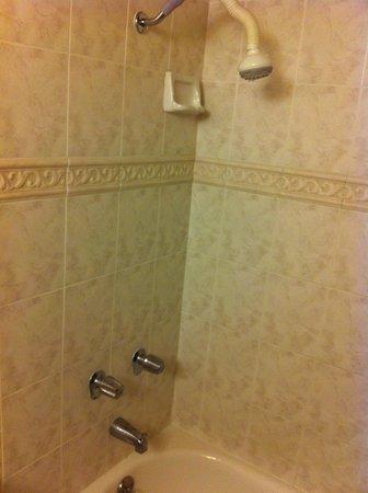 Cozy Inn: Shower