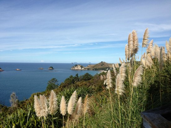 Sea Escape Retreat : beauty walk