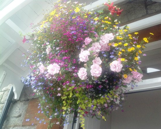 Hanging Basket Of Flowers At Abbey Cottage Front Door