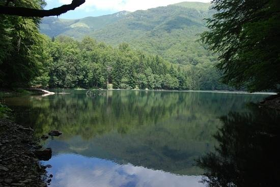 Biogradska Gora National Park : По озеру можнопокататься на лодке