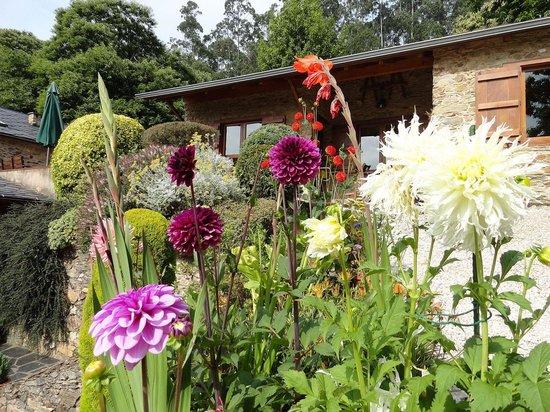 Ultreia Rural B&B: jardin
