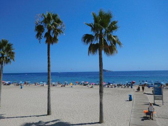 Hotel Internacional: playa por la mañana
