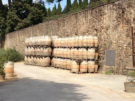 Guido's Tours - Wine Tours in Tuscany: Wine barrels
