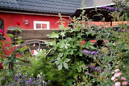Bakkelund Bed & Breakfast: The reception area