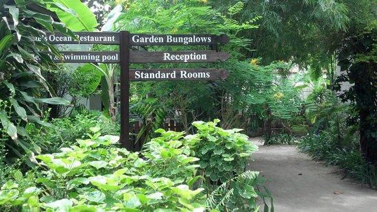 Chaweng Garden Beach Resort: The roads to the rooms
