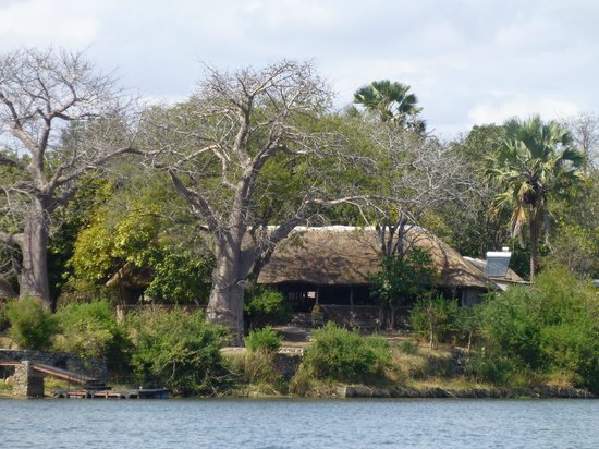 Central African Wilderness Safaris Mvuu Lodge: Mvuu from the River