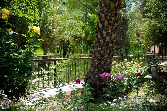 Dar Ayniwen Villa Hotel : Gardens