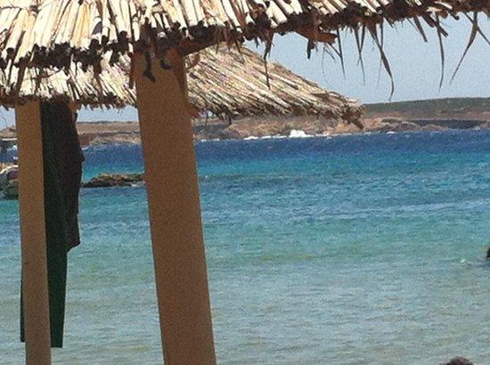 Faragas Beach Bar: mare