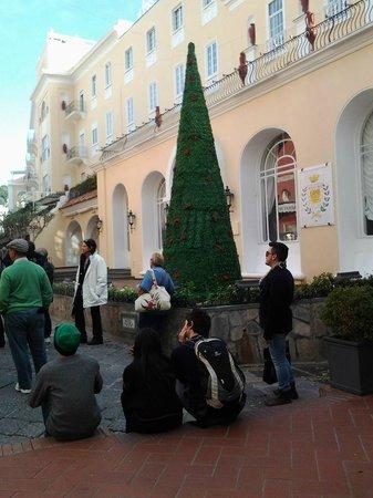 Hotel Regina Cristina: Parece Mágica