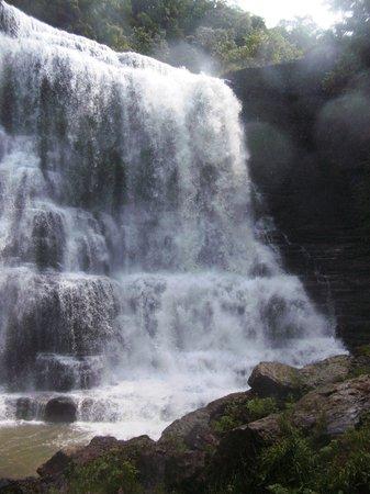 Burgess Falls: Big Falls