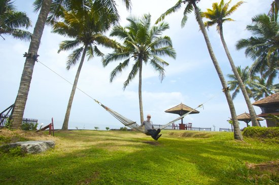 Blue Water Beach Resort: Relaxing on the hammock