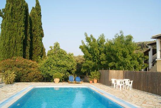 Villa Bacchus: the villa pool area