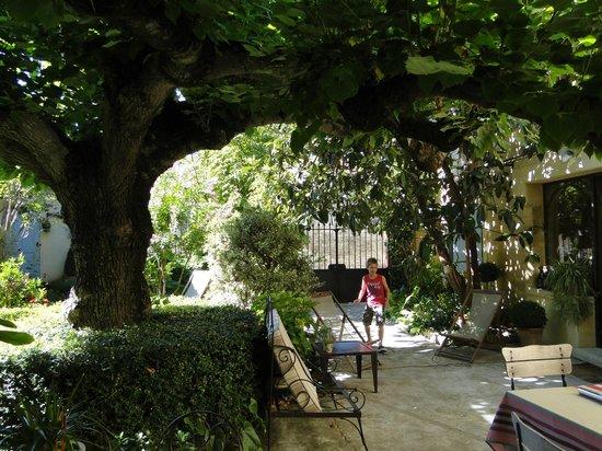 L' Accroche Coeur : Jardin vu de la maison