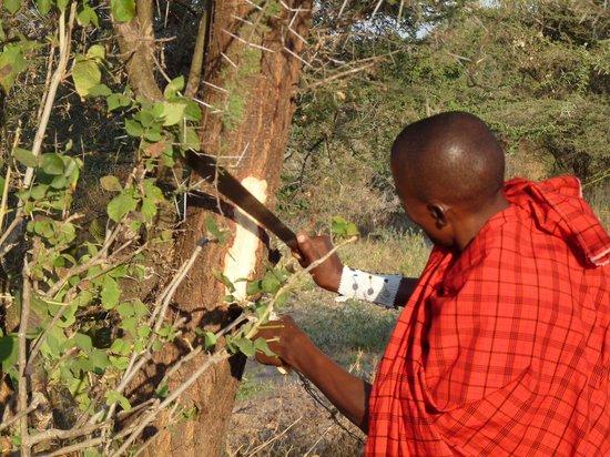 Osupuko Lodge : La passeggiata nel Bush con i masai