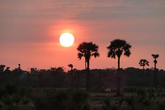Tur Pribadi - Angkor Helping Tour Guide