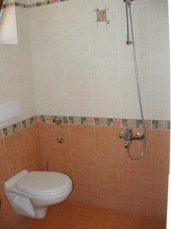 Dafi Hotel: Shower