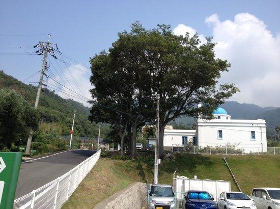 Michi-no-Eki Shodojima Olive Park : 入口