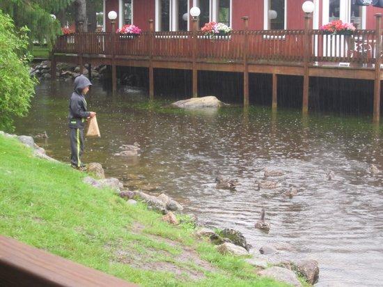Woodwards Resort & Inn: Restaurant overlooking the duck pond