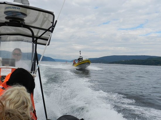 Otis Excursions : A sister zodiac approaching ours
