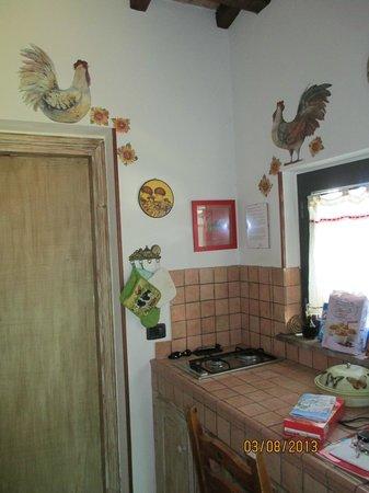 """Il Pozzo Romano : decorazioni della cucina della """"casa del gallo"""""""