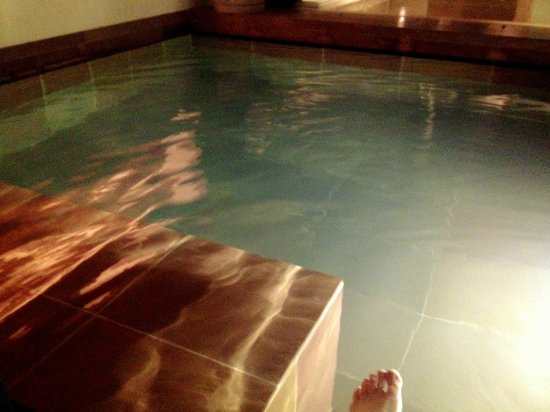 The Lodhi: Swimming Pool In Room