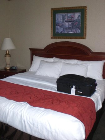 Comfortable bed and beddinggreat pillows too picture for Comfort inn mattress brand