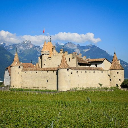 Swiss Riviera Wine Tours