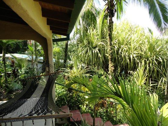 Falls Resort at Manuel Antonio : View