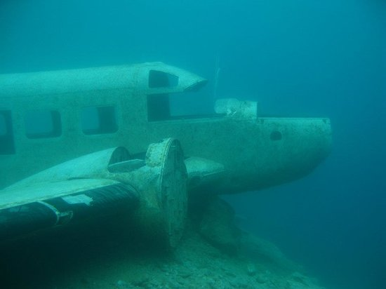 Delfinus Plongee: Avion