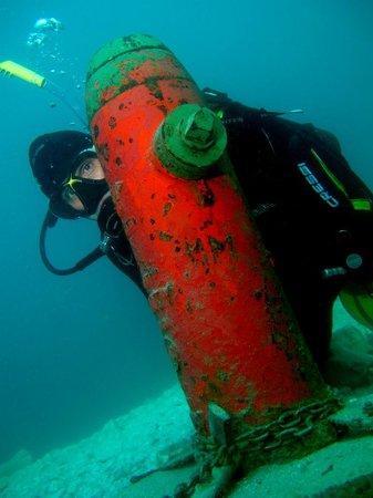 Delfinus Plongée: Borne
