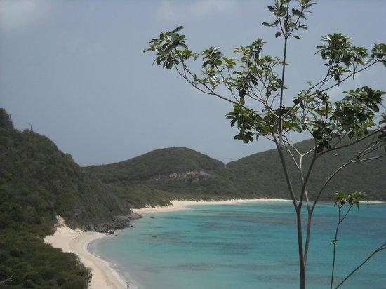 Mango Bay Resort: savannah bay