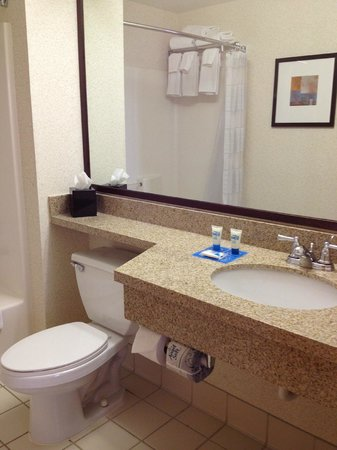 Hyatt House Chicago/Schaumburg: bathroom