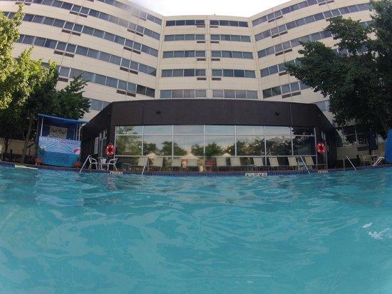 Renaissance Woodbridge Hotel Pool