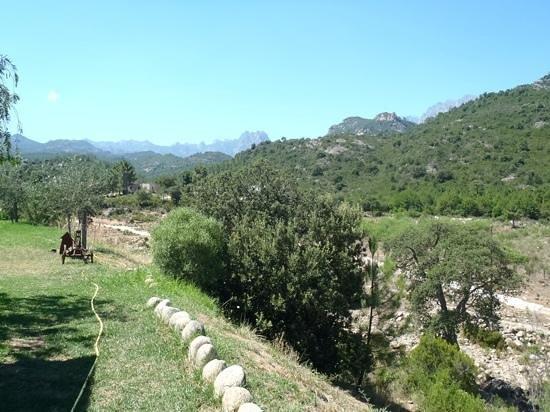 A Pinzutella : les aiguilles de Bavella