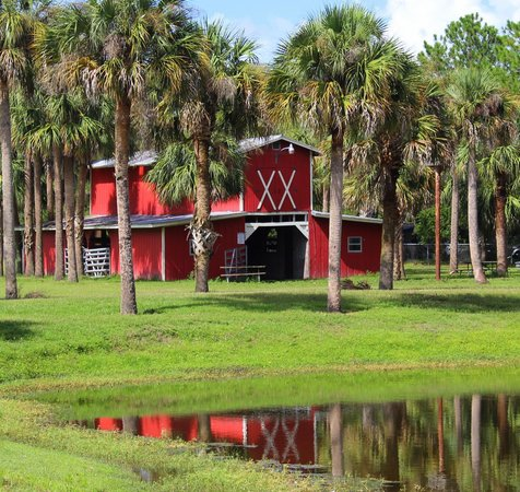 Horse stable on site picture of boggy creek resort and for Boggy creek fish camp