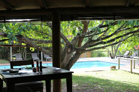Wilderness Safaris Rocktail Camp: Pool area with towels and sun loungers