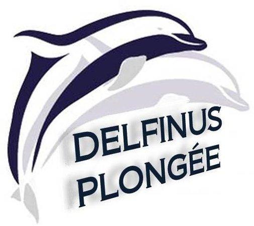 Delfinus Plongée