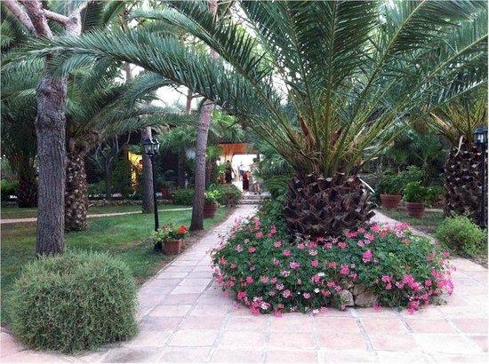 Hotel Villaggio Torre San Vito: Giardini curati e puliti