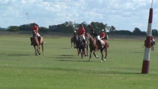 La Tarde Polo Club: il campo da polo