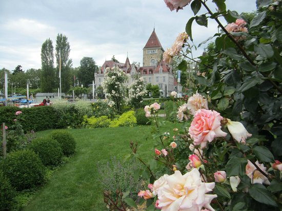 Café Beau-Rivage : Roseraie avec vue sur le Château