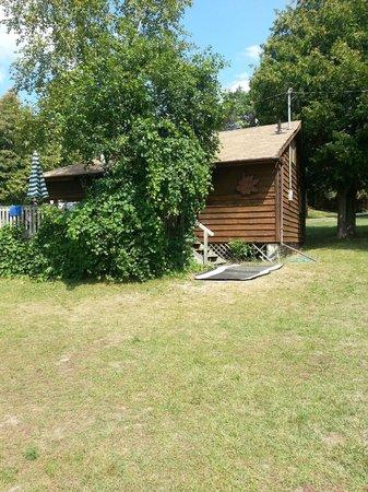 Triple T Cedar Resort: Cottage 3