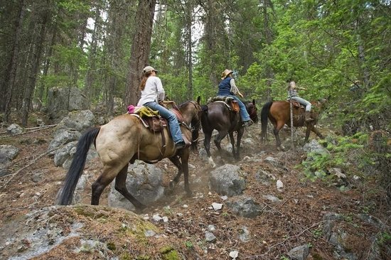 Copper Cayuse Outfitters: Backcountry Rides