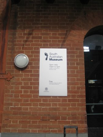 South Australian Museum: ingresso  del Museo