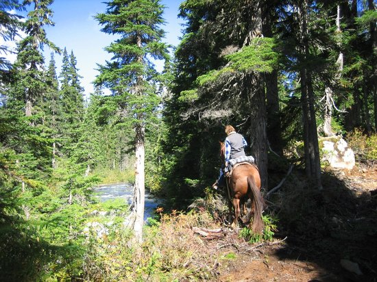 Copper Cayuse Outfitters: Natural Relaxation