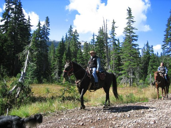 Copper Cayuse Outfitters: Expert Horsemanship