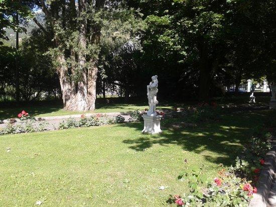 Villa Morelia : Jardin