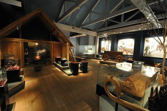 Lindholm Hoeje Museum: Lindholm Høje
